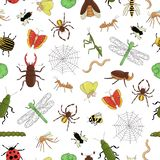 Vector seamless pattern of colorful  insects. Repeat background with isolated bright bee, bumble bee, may-bug, fly, moth, royalty free illustration