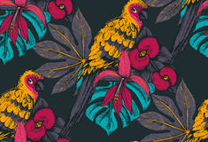 Vector seamless pattern with compositions of hand drawn tropical flowers and exotic birds. Vector seamless pattern with compositions of hand drawn tropical Royalty Free Stock Photos