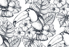 Vector seamless pattern with compositions of hand drawn tropical flowers and exotic birds. Vector seamless pattern with compositions of hand drawn tropical Royalty Free Stock Photo