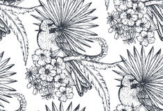 Vector seamless pattern with compositions of hand drawn tropical flowers and exotic birds. Vector seamless pattern with compositions of hand drawn tropical Stock Photo