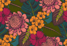 Vector seamless pattern with compositions of hand drawn tropical flowers. Palm leaves, jungle plants, paradise bouquet. Beautiful colorful floral endless Royalty Free Stock Photos
