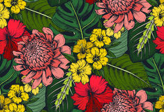 Vector seamless pattern with compositions of hand drawn tropical flowers. Palm leaves, jungle plants, paradise bouquet. Beautiful colorful floral endless Stock Photo