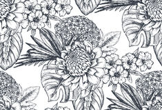 Vector seamless pattern with compositions of hand drawn tropical flowers and plants. Vector seamless pattern with compositions of hand drawn tropical flowers Stock Images