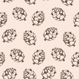 Vector seamless pattern with cones. Stock Photo