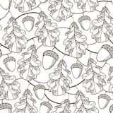 Vector seamless pattern with contour oak leaves, branches and acorns on the white background. Royalty Free Stock Photography
