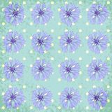 Vector seamless pattern with cornflower Stock Photo