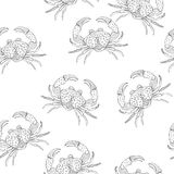 Vector Seamless Pattern with Crabs Stock Photography