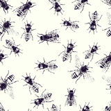 Vector seamless pattern with crawling bees Royalty Free Stock Photography