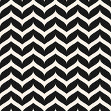 Vector seamless pattern, curly zig zag lines. Simple horizontal stock illustration