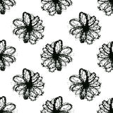 Vector seamless pattern with daisy flower Stock Photo