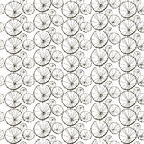 Vector seamless pattern with dandelions. Stylized print for textile, wrapping paper. Floral texture Royalty Free Stock Image