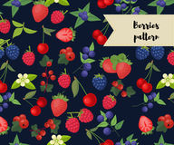 Vector seamless pattern with different berries. strawberry, raspberry, cherry, redcurrant, blueberry, blackberry. Vector seamless pattern with different berries Royalty Free Stock Photos