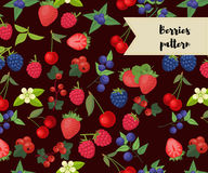 Vector seamless pattern with different berries. Strawberry, raspberry, cherry, redcurrant blueberry blackberry Royalty Free Stock Photo