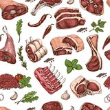 Vector seamless pattern with different color meats in sketch style. Vector illustration for your design royalty free illustration