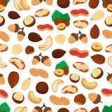 Vector seamless pattern of different nuts - cashew, almond, hazelnut, macadamia, acorn. Cartoon flat style Stock Photography