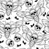 Vector seamless pattern with dotted black Death`s head hawk moth or Acherontia atropos on the white background. Royalty Free Stock Photos