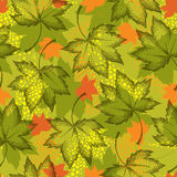 Vector seamless pattern with dotted maple leaves on the khaki background. Floral autumn elements in dotwork style. Abstract autumn background with decorative Stock Photo