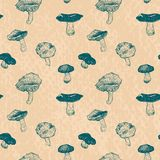 Vector seamless pattern with drawing mushrooms Stock Images