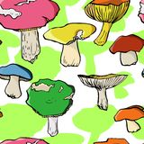 Vector seamless pattern with drawing mushrooms Royalty Free Stock Photo