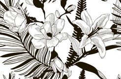 Vector Seamless Pattern with Drawn Flowers. Vector Black Decorative Seamless Background Pattern with Drawn Flowers and Leaves, Lily, Cherry Blossom, Fern Leaves Royalty Free Stock Photos