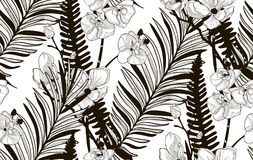 Vector Seamless Pattern with Drawn Flowers and Leaves. Vector Black Decorative Seamless Background Pattern with Drawn Flowers and Leaves, Orchid, Cherry Blossom Stock Photography