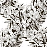 Vector Seamless Pattern with Drawn Flowers and Leaves. Vector Black Decorative Seamless Background Pattern with Drawn Flowers and Leaves, Cherry Blossom, Bamboo Royalty Free Stock Photography