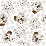 Vector seamless pattern with English Bulldog and traces. Royalty Free Stock Photography