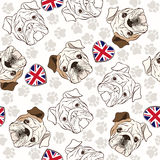 Vector seamless pattern with English Bulldog, traces  and Heart. English bulldogs. Endless background. Vector illustration Stock Image