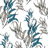 Vector seamless pattern with eucaliptus leaves Stock Photos