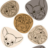 Vector seamless pattern with faces dogs. Royalty Free Stock Image