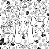 Vector seamless pattern with faces dogs and traces. Monochrome b Royalty Free Stock Image