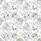 Vector seamless pattern with faces dogs and traces. Monochrome b Stock Image