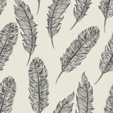 Vector seamless pattern feathers bird Royalty Free Stock Images
