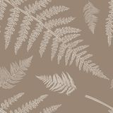Vector seamless pattern with fern royalty free illustration