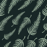 Vector seamless pattern with fern leaves Royalty Free Stock Image