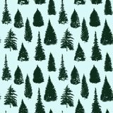 Vector seamless pattern with fir trees. Abstract nature background, forest template, hand drawn illustration Stock Photo
