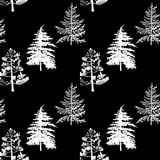 Vector seamless pattern with fir trees. Abstract nature background, forest template, hand drawn illustration Royalty Free Stock Photo