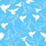 Vector seamless pattern of a flock flying pigeons Royalty Free Stock Images