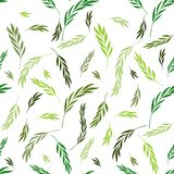 Vector seamless pattern. Floral stylish background with graphic. Leaves and twigs. Branches of leaves in Green shades on white background Royalty Free Stock Photography