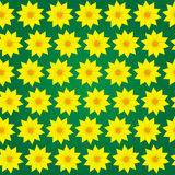 Vector seamless pattern. Flower background Stock Images