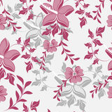 Vector seamless pattern flower texture Royalty Free Stock Image