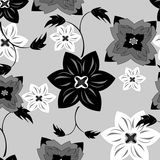 Vector seamless pattern flower texture Stock Images