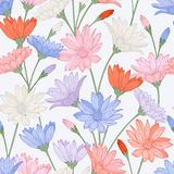 Vector seamless pattern with  flowers Royalty Free Stock Photos