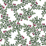 Vector seamless pattern with flowers royalty free stock photo
