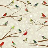 Vector seamless pattern of forest birds Stock Photo