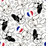 Vector seamless pattern with French Bulldog, traces  and Heart f Royalty Free Stock Photo
