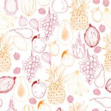 Vector seamless pattern  with fruits. Royalty Free Stock Images