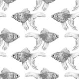 Vector seamless pattern with goldfish isolated on white background drawn by hand. Graphic drawing, pointillism technique. Underwater world. Black and white Stock Photos