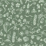 Vector seamless pattern, graphic illustration Stock Images