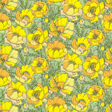 Vector seamless pattern with graphic spring flowers Stock Photography